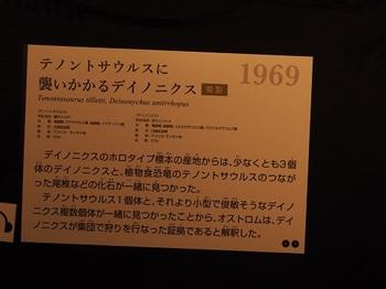 PA050758.JPG